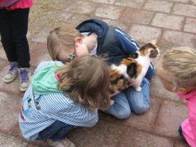 Knuffelen met de kat